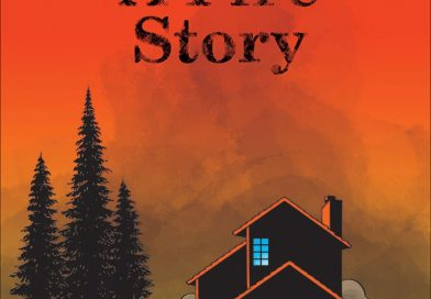 Review: A Fire Story by Brian Fies